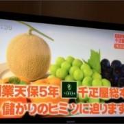 """noriさんはTwitterを使っています: """"以前千疋屋のフルーツを頂いて食べたが、値段の割に普通だったイメージ(^^;; まー同じ千疋屋フルーツでも値段のランクがあるのだろうが(^-^) でも千疋屋..."""